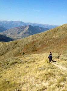 Tea Obreht on the Trail